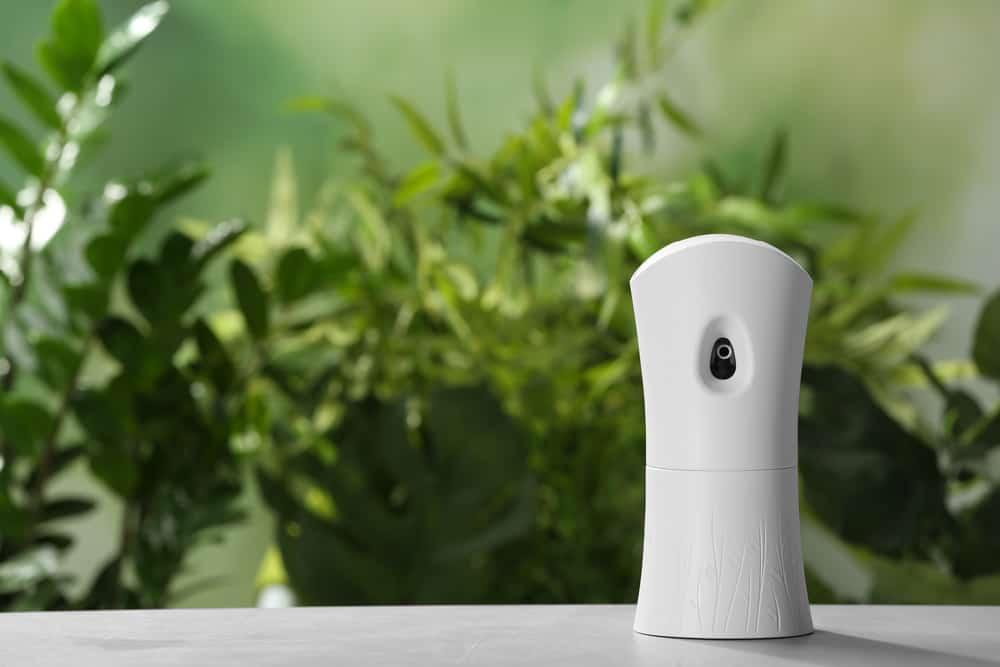 5 פתרונות לריח נעים בבית העסק